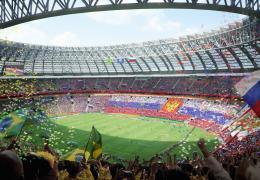 <p>Стадион Лужники в Москве является наибольшим спортивным стадионом в России.</p>
